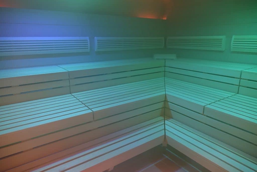 sauna_dampfgenerator